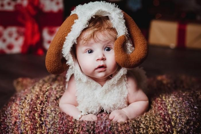 Sheperd Baby
